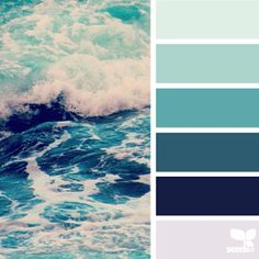 today's inspiration image for { color sea } is by @thebungalow22 ... thank you for another incredible #SeedsColor photo share , Steph!