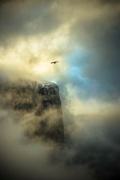 Photo by Frank Ruggles taken in Yosemite National Park. Shared on Google+