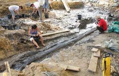Un énorme conifère couché dans l'argile depuis 130 millions d'années, haut de plus de 9 mètre au milieu des dinosaures  d'Angeac // Fouilles 2012