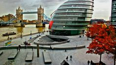 Tower Bridge, the Thames and City Hall. See more photos of London in the autumn: http://timeout.com/autumnphotos