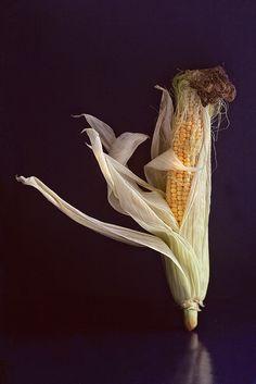 Танцующая еда. Невеста - кукурузка).