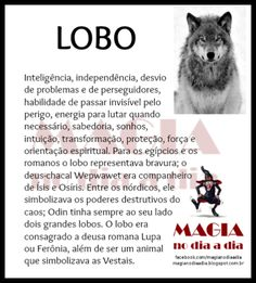 Magia no Dia a Dia: Lobo Wicca Witchcraft, Pagan Witch, Wiccan, Mystical World, A Kind Of Magic, Magic Symbols, Wolf Wallpaper, Witch House, Animal Totems