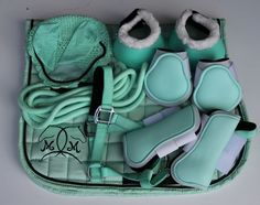 Looking for matching horse gear Mint English Tack Set includes Saddle Pad Bonnet Halter Bandages Boots Thanks for shopping at Matchy Matchy Sets Looking for matching hor. Horse Riding Gear, Horse Gear, Horse Saddle Pads, Horse Saddles, Horse Boots, Horse Halters, Equestrian Boots, Equestrian Outfits, Horse Tack Rooms