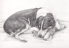 Potlood tekening van Jari, Honden portret in grafiet door Dyenne Nouwen