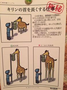 Top secret mission of the zoo is ' work' lengthening the neck of the short giraffe of 'neck' . Funny Images, Funny Pictures, Creepy Cat, Manga Story, Funny Commercials, Best Portraits, Can't Stop Laughing, Funny Moments, The Funny