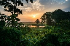 The Disappearing Island: Majuli Island In Assam - Lost With Purpose Live Wallpaper Iphone, Live Wallpapers, Places To Travel, Places To Visit, Dark Art Photography, Life Is A Journey, Photo Essay, India Travel, Incredible India