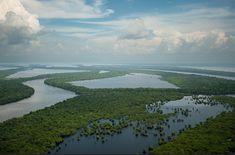 Férias no Amazonas: opções de passeios em Manaus e região  Guia Viajar Melhor