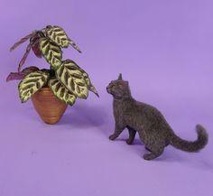 http://www.ebay.com/itm/Jupiter-a-OOAK-Unique-Realistic-Handmade-Miniature-Dark-Grey-Cat-Sculpture-/132158098942?hash=item1ec53c8dfe:g:lYgAAOSwc49Y73PN