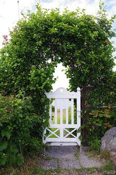 Vit grind med havsutsikt, en sommardag på Sandön. Foto av Alicia Sivertsson - www.aliciasivert.se Outdoor Structures, Future, Garden, Future Tense, Garten, Lawn And Garden, Gardens, Gardening, Outdoor