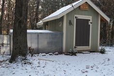 """Chicken Coop Run - Winterized!  (inexpensive and so much more fun for the ladies than being """"cooped"""" up all winter!)"""