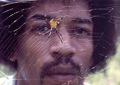 Jimi Hendrix Rare | jimi-hendrix-rare-photo-ron-raffaelli-pawn-stars-11.png