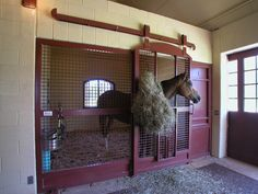 Young Riding Stables | GH2 Gralla Equine Architects....these great stalls are designed by Lucas Equine Equipment...