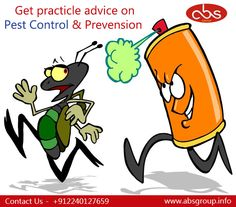 Are you irritated with #pest ... Get practicle advice & #prevension by our #pestcontrol #services #absgroup