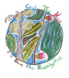 How Children Draw 'Save the Eucalyptus Trees'
