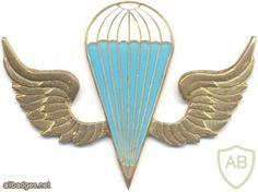 KENYA Parachutist wings, white-blue, gold