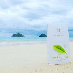Uplift / Sencha Green #healthy #tea #organic #green #paraside