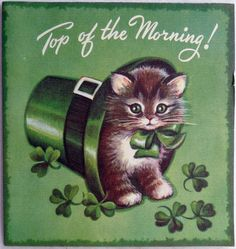 16 Sweet Kitty Cat in the Irish Hat Vtg St Patricks Day Greeting Card Saint Patricks Day Art, St Patricks Day Cards, Happy St Patricks Day, Vintage Greeting Cards, Vintage Postcards, Fete Saint Patrick, St Patricks Day Wallpaper, Irish Hat, Rio De Janeiro