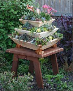 Triolife Plant Pyramid, 3 levels