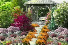 Projekt ogrodu:Altanka w kwiatach - Wiosna