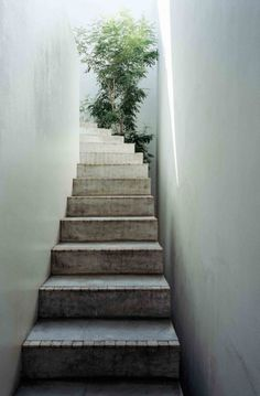If i ever have stairs. LOVE Love house by Takeshi Hosaka architects, Yokohama, Japan, a response to Japanese urbanism that makes the most of the available space light and air in the tightly packed city. Architecture Du Japon, Architecture Design, Minimalist Architecture, Melbourne Architecture, Classical Architecture, Ancient Architecture, Sustainable Architecture, Landscape Architecture, Exterior Design