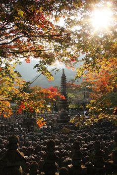 Nenbutsu-ji temple, Kyoto, Japan: photo by A beatufil place Beautiful World, Beautiful Places, Kyoto Japan, Japan Japan, Japan Summer, Japan Travel, Travel Trip, Japan Photo, Need A Vacation