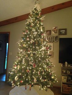 Nantucket Blue Spruce Christmas Tree from Balsam Hill