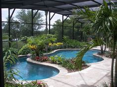 Tropical-Beach Entry Pool Luxury Swimming Pools, Natural Swimming Pools, Luxury Pools, Dream Pools, Swimming Pools Backyard, Swimming Pool Designs, Lap Swimming, Tropical Pool Landscaping, Pool Decks
