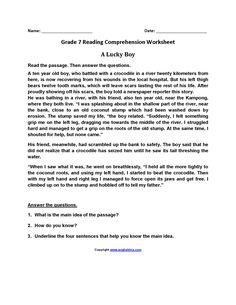 seventh grade reading worksheets board reading worksheets reading reading. Black Bedroom Furniture Sets. Home Design Ideas