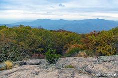 Blood Mountain is likely North Georgia's most popular fall hiking destination, and for good reason: views from the summit are stunning. Hike the Blood Mountain Wilderness on one of our favorite Blood Mountain trails.