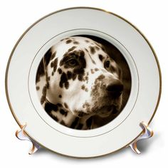 3dRose cp_150163_1 Sepia Toned Photography of a Dalmatian Dog Porcelain Plate, 8-Inch -- Trust me, this is great! Click the image. : Commemorative Plates