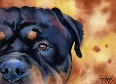 ROTTWEILER WATERCOLOR Dog 8 x 10 ART Print Signed by Artist DJR