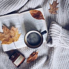 Bom dia :) . Credits to @libri.vita.per.lanimablog . #books #read #lettricecompulsiva #instabook #bookstagram #reader #bookworm #literature #pages #author