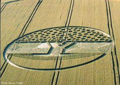 There are many of us who 'missed' this amazing Tree of Life Crop Circle that appeared way back in 2002.       Appeared at East Field - Alton Barnes, Wiltshire, UK.  15th July 2002