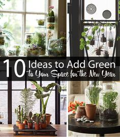 10 IDEAS TO ADD GREEN TO YOUR SPACE (SLIDESHOW): (1)Faux Terrariums (2)Add a Fig (3)Canning Jar Terrariums (4)Found Jar Bulbs, winter/spring bulbs in jars (5)Terra Cotta Bulbs (6)Copper Planter DIY (7)Pallet Display (8)Hanging Set (9)Bonzai! (10)Giant Terrarium *LOOKS VERY PRETTY, DOABLE, & w/ IDEA LINKS*