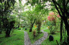 Hotel Miramontes Garden Path #CostaRica   monteverdetours.com