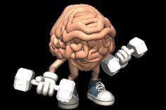 Brain Training Science Infographic