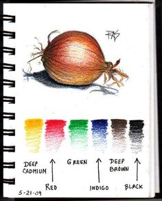 ideas color pencil Drawing With A Limited Palette in Colored Pencils Colour Pencil Observational Drawing. Onion Page in my ProArt wirebound sketchbook with color samples of all six Coloursoft colors used. Robert A. Sloan, May 2009 Colored Pencil Tutorial, Colored Pencil Techniques, Pencil Drawing Tutorials, Pencil Drawings, Drawing Ideas, Rose Drawings, Drawing Drawing, Botanical Drawings, Botanical Art