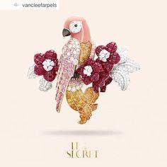 32 отметок «Нравится», 7 комментариев — Richa Goyal Sikri (@richagoyalsikri) в Instagram: «One of my favourite pieces from Van Cleef & Arpels Le Secret collection...Have a great Sunday!»