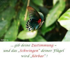 """.. gib deine Zustimmung ~ und das """"#Schwingen"""" deiner #Flügel wird """"hörbar"""" !"""
