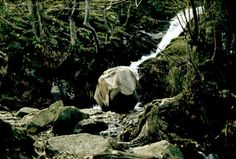 """David Nash - Wooden Boulder / Beginning in 1978, when a spherical chunk of oak got lodged in a stream as he was moving it to his studio, the sculptor David Nash has documented its long riverine journey. / """"It is not lost. It is wherever it is."""""""