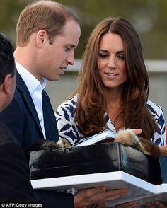 Duke of Cambridge gets a little too close to cliff at beauty spot in Australia after meeting victims of bushfires with Kate | Mail Online