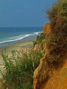 . Autumn day -Carlsbad Beach, California.....  A trip there this summer would be great!   Keeping my fingers crossed.
