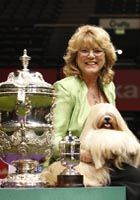 Elizabeth and owner, Margaret Anderson from Coventry were awarded the prestigious Crufts Best in Show Trophy. Boxer Puppies, Boxer Mix, Dogs And Puppies, Doggies, Lhasa Apso, Mountain Dogs, Bernese Mountain, Dog Competitions, The Kennel Club