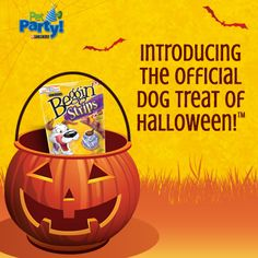 Halloween Pet Party & $50 Walmart GC Giveaway  Meow!!  http://bit.ly/1uazshx