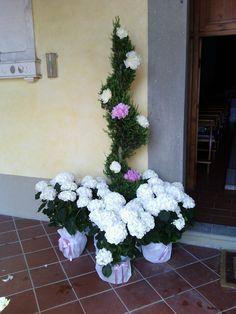 Entrata della Chiesa di San Pierino in Vincio