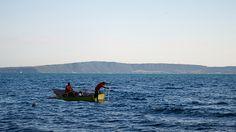 Fish Hunters ~ 1/52 Project