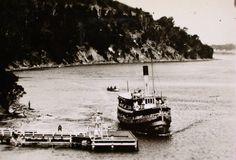 Steamer-SS-Gippsland