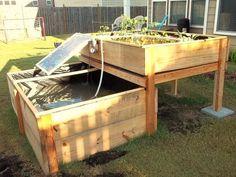 Backyard Aquaponics System by Renewable DIY — Kickstarter