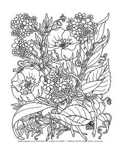 Free coloring page «coloring-adult-savage-flowers».