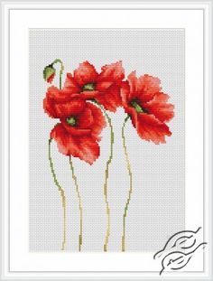 CROSS STITCH KITS - LUCA-S - Flowers - Poppies - Gvello Stitch
